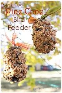 http://myblessedlife.net/2011/11/make-bird-feeder.html