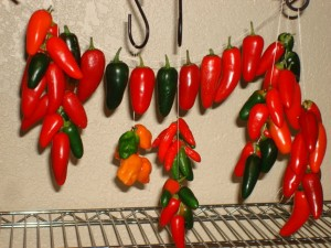 Hot Peppers on a String